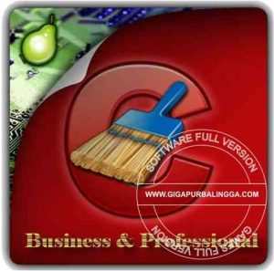 Download CCleaner Professional 5.72.7994 Final Full Version