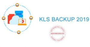 Download KLS Backup Professional 2019 v10.0.2.6 Full Crack