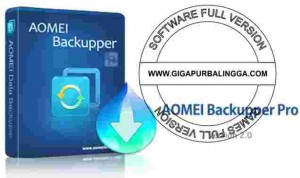 Download AOMEI Backupper Professional v6.2 Full Version