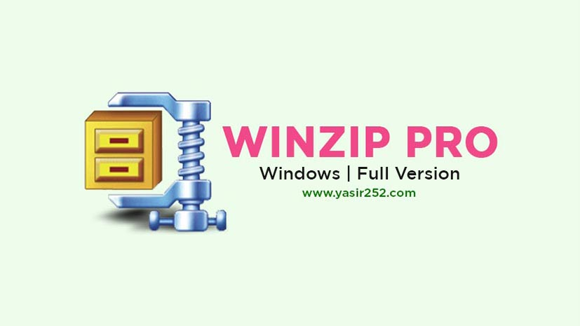 Download WinZip Pro 25.0 Build 14273 (Windows) Full Version